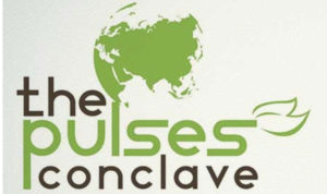 allbeans_pulses_conclave